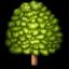 :deciduous_tree: